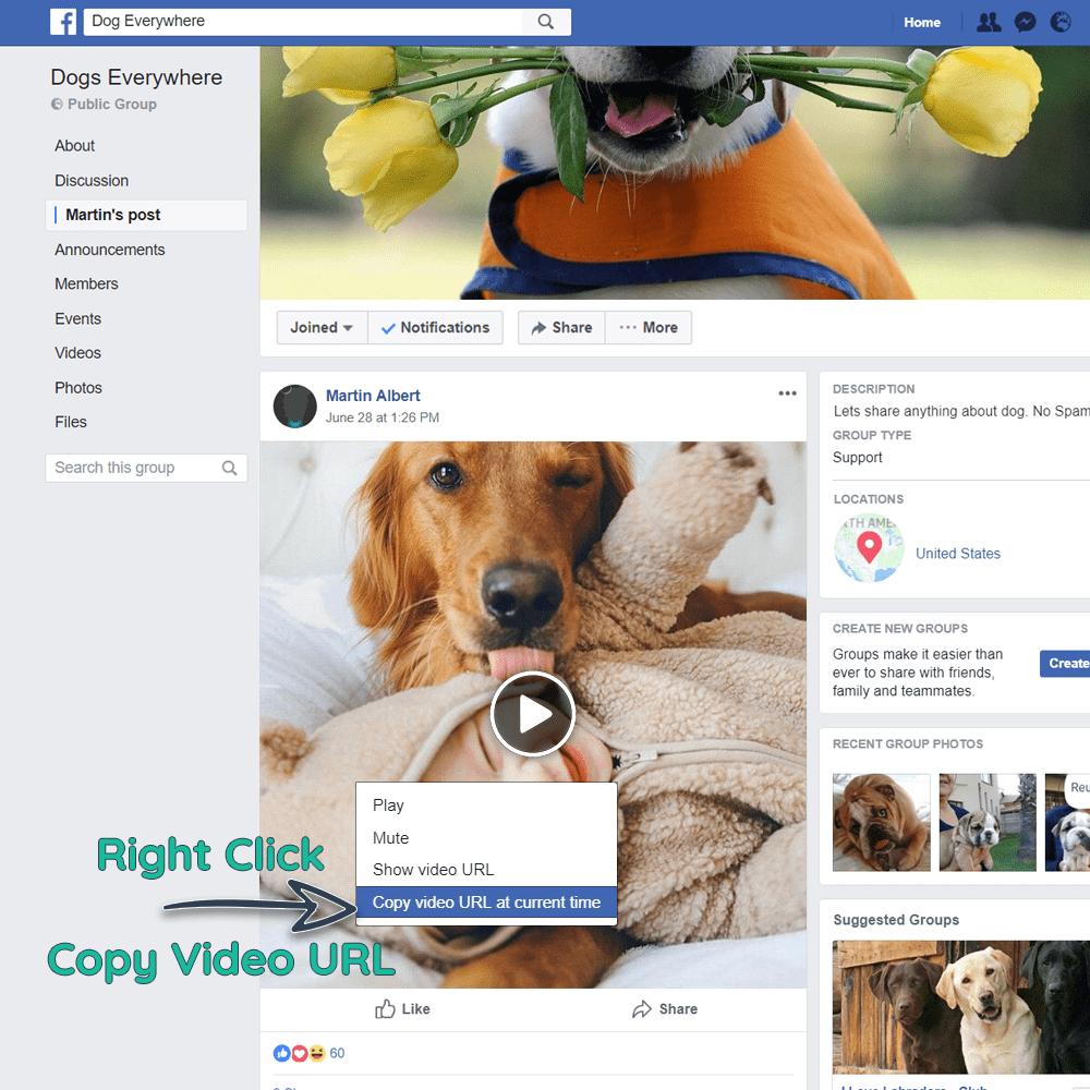 Wie man private Facebook-Videos herunterlädt